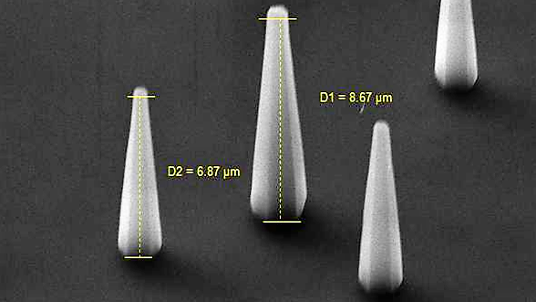 An SEM image of ZnO nanorods from side-view.