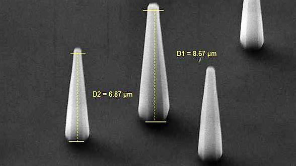 Snímek ZnO nanotyček v SEM.