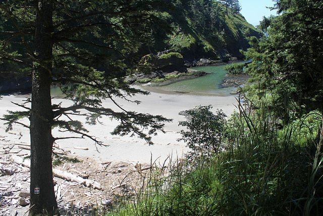 Fotka pláže.